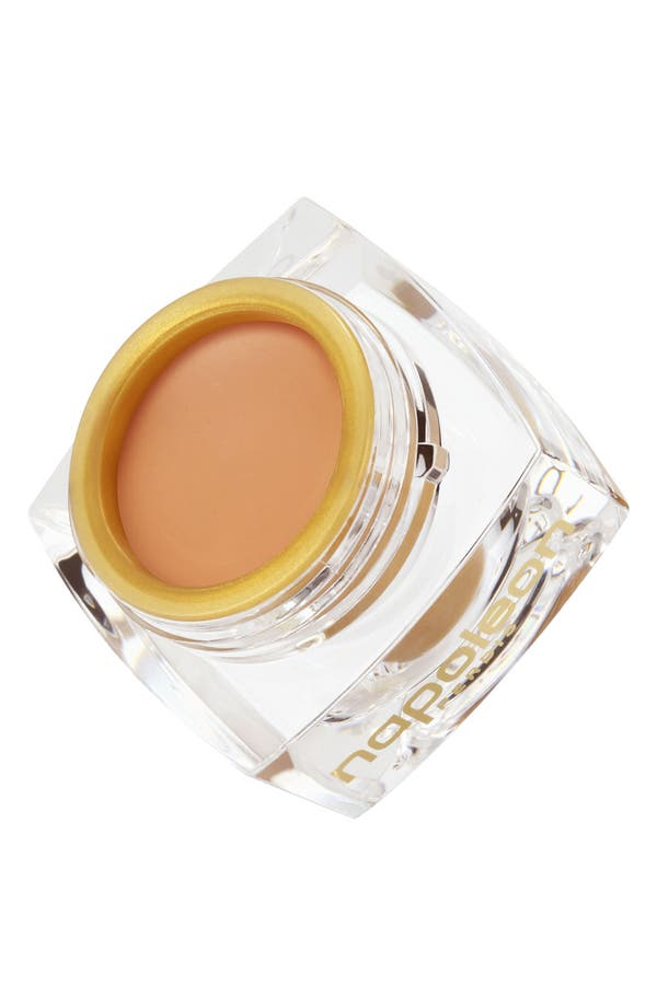 Main Image - Napoleon Perdis 'The One' Concealer