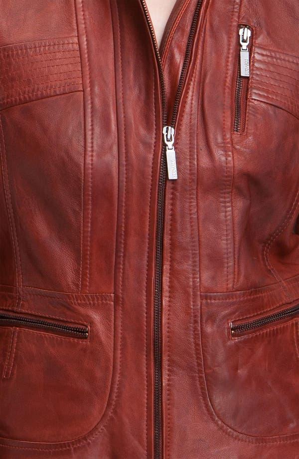 Alternate Image 3  - Bernardo Collared Leather Scuba Jacket
