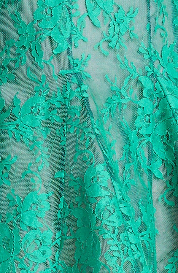 Alternate Image 4  - Erdem Lace Overlay Full Skirt Dress