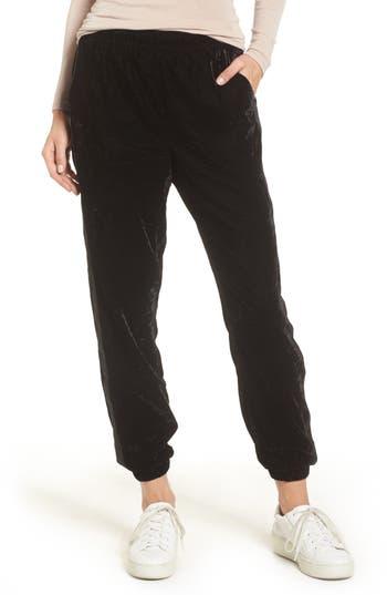 Splendid Velvet Jogger Pants