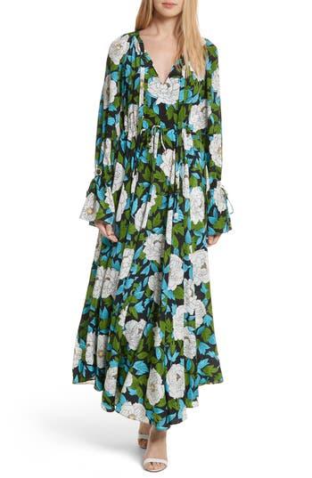 Diane Von Furstenberg Floral Silk Maxi Dress