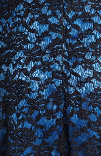Alternate Image 3  - Ivy & Blu Lace Fit & Flare Dress