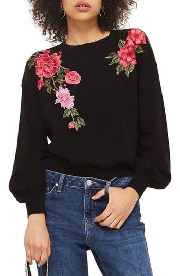 Topshop Stitchy Embroidere..