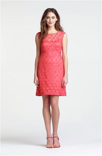 Polka Dot Lace A-Line Dress, video thumbnail