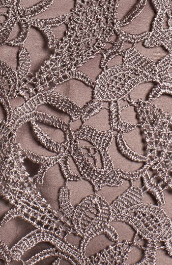 Alternate Image 3  - Adrianna Papell Lace Fit & Flare Dress