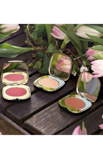 Alternate Image 4  - Dolce&Gabbana Beauty 'Blush of Roses - Rosa del Deserto' Creamy Face Colour