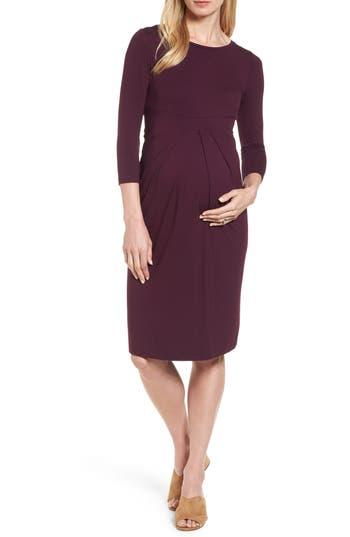 Isabella Oliver Ivybridge Jersey Maternity Dress