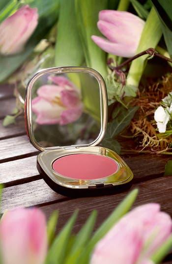 Alternate Image 3  - Dolce&Gabbana Beauty 'Blush of Roses - Rosa del Deserto' Creamy Face Colour