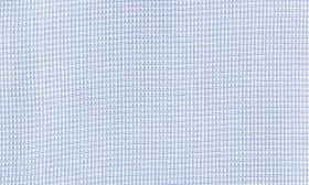Blue Hydrangea swatch image