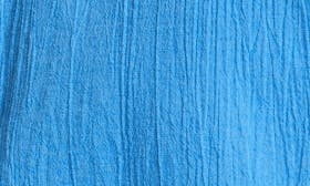 Polymer Blue swatch image