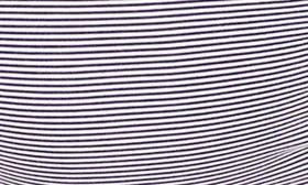 True Navy/Ivory Microstripe swatch image