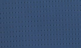 Blue Insignia swatch image