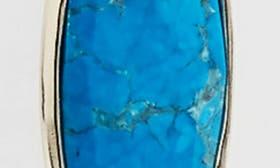 Aqua Howlite/ Gold swatch image