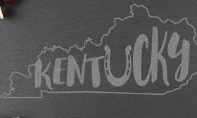 Kentucky swatch image