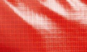 Paintbrush Red swatch image