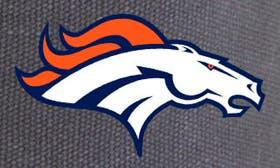 Denver Broncos swatch image