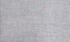 Navy Night- White Stripe swatch image