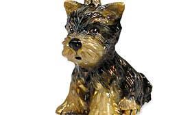Yorkshire Terrier Puppy swatch image