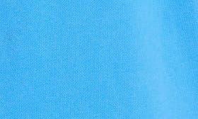 Delft Blue swatch image