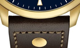 Chocolate/ Blue/ Gold swatch image