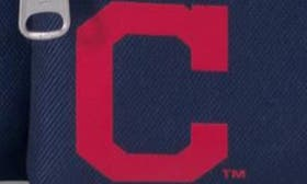 Cleveland Indians swatch image
