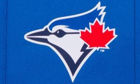 Toronto Blue Jays swatch image