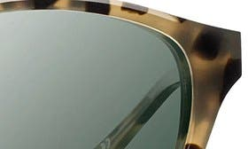 Tortoise/ Silver/ G15 Polar swatch image