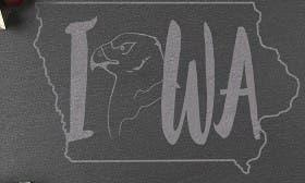 Iowa swatch image