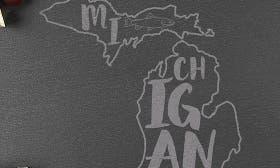 Michigan swatch image
