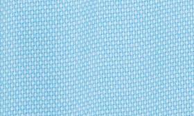 Blue Aquarius swatch image