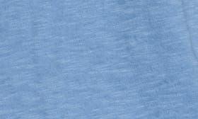 Blue Lichen swatch image