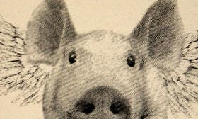 Pig swatch image