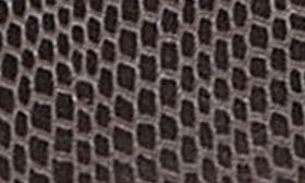 Dark Brown Snake Print swatch image