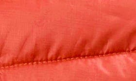 Neon Coral swatch image