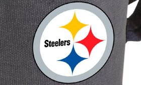 Pittsburgh Steelers swatch image