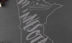 Minnesota swatch image