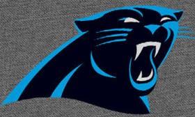 Carolina Panthers swatch image