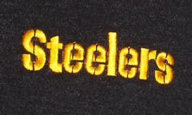 Steelers swatch image