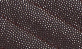 Black Tulip swatch image
