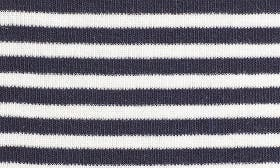 Navy Ivory Stripe swatch image