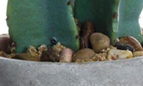 Green Grey swatch image