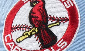 St. Louis Cardinals swatch image