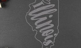 Illinois swatch image