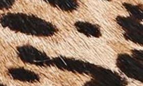 Sand Leopard swatch image