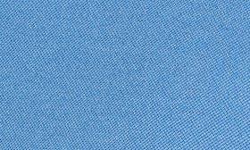 Avio Blue swatch image
