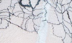 Blue Drift/ Teal Gazer swatch image