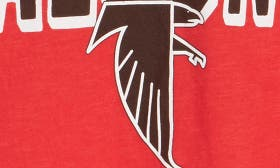 Falcons swatch image