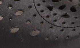 Black Raven Leather swatch image