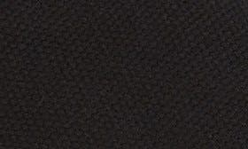 Black Canvas swatch image