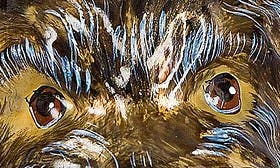 Yorkshire Terrier swatch image